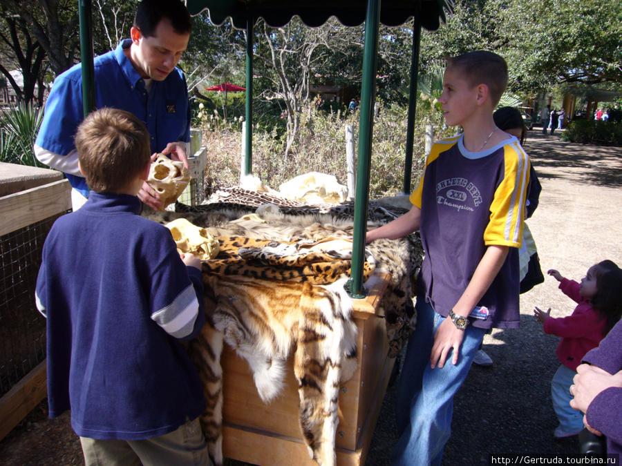 Служащий зоопарка рассказывает детям, как выделывают шкурки погибщих животных и делают сувениры.