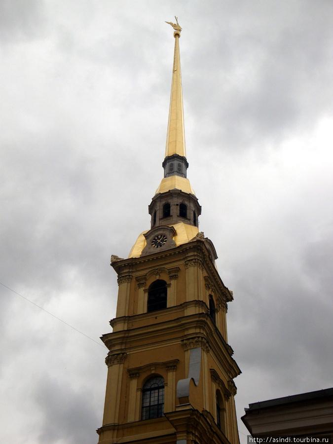 Шпиль венчает фигура ангела, который является одним из символов нашего города. Размеры ангела довольно внушительные: высота 3,2 метра при размахе крыльев 3,8 метра. Сам ангел установлен на яблоке диаметром 1,6 метра.