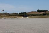 На острове есть аэродром с полосой около 1200 метров и есть авиаперевозчики, которые готовы предоставить услуги аэротакси из аэропорта Jandakot до Rottnest и обратно.