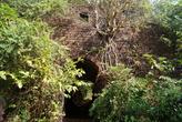 Форт — самое красивое место за всю поездку. Как в детстве, в мультике про Маугли.