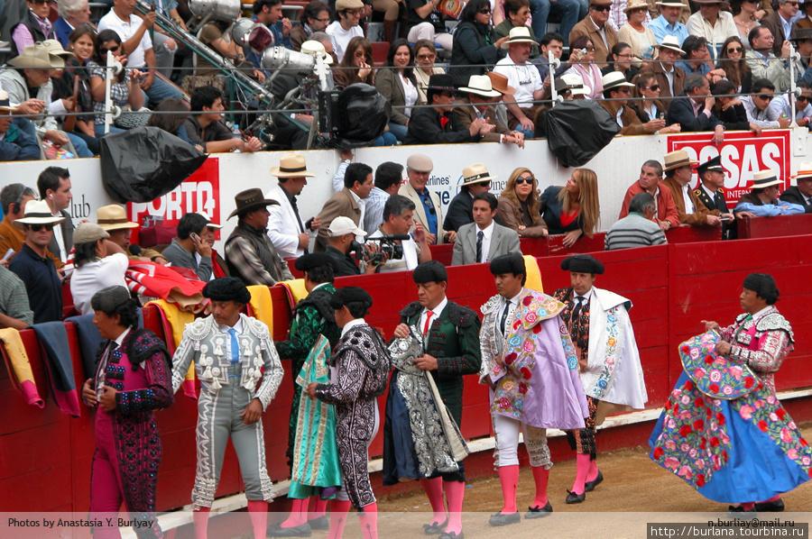 Участники одевают плащи