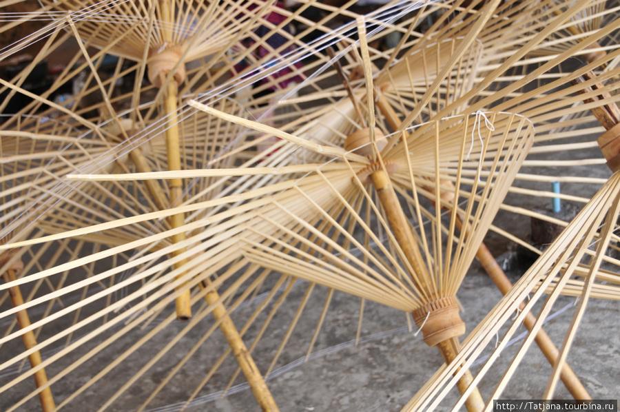 каркас обыкновенный тайский зонтичный