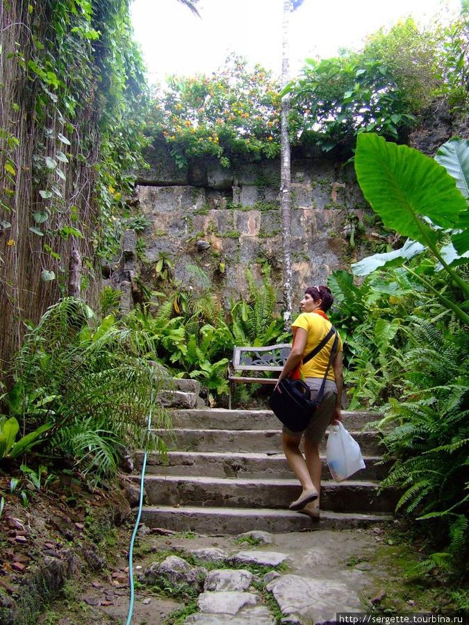 Лестница наверх форта