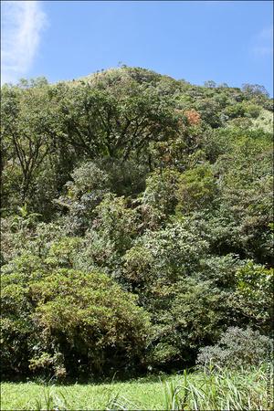 Вершина горы — от кратера наверх ещё 55 метров