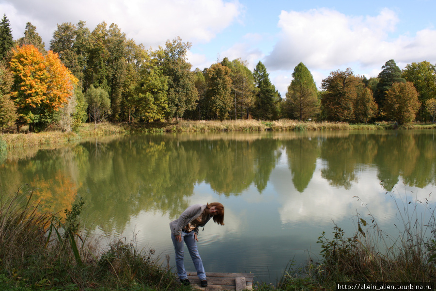 На территории усадьбы несколько прудов, которые в прошлом составляли каскадную систему