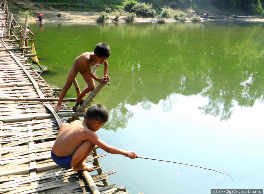 как научиться ловить рыбу в речке