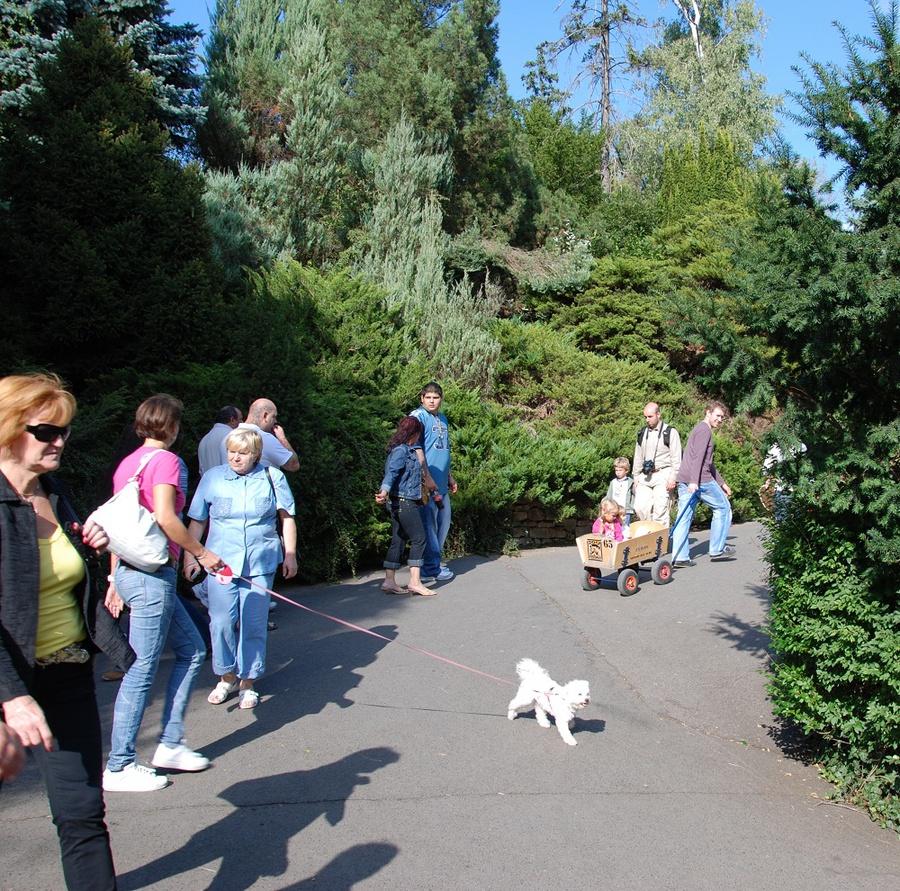 В зоопарке много зелени и там приятно гулять, но ходить много и часто в горку, соответственно и с горки.