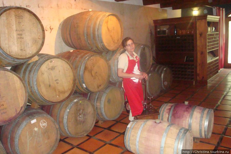 На винной ферме с Стелленбош.