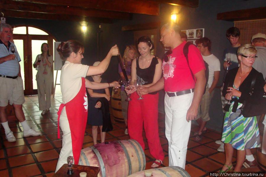Дегустируем вино (прямо из бочки).