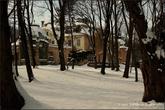 г. Бжеско, Польша. Дворец Гётц. Дворцовый парк заложенный в английском стиле