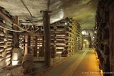 г. Величка, Польша. Соляная шахта в Величке. Солевая камера Урсула. I уровень, глубина 64 м. Камера выдолблена в верхней части большой глыбы зеленой соли. Горняки вели здесь работы приблизительно в 1649 году, добывая соль вручную. В выработке реконструировано надшурфовое устройство, предназначенное для вертикального подъема соли. Тележка, установленная по соседству с шурфом и называемая «венгерский пес», иллюстрирует старые способы вертикальной транспортировки добычи.