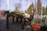 Местный центр садоводства