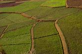 На спуске, с высоты можно наблюдать завораживающие пейзажи с орнаментами из рисовых полей, вписанных в ландшафт.