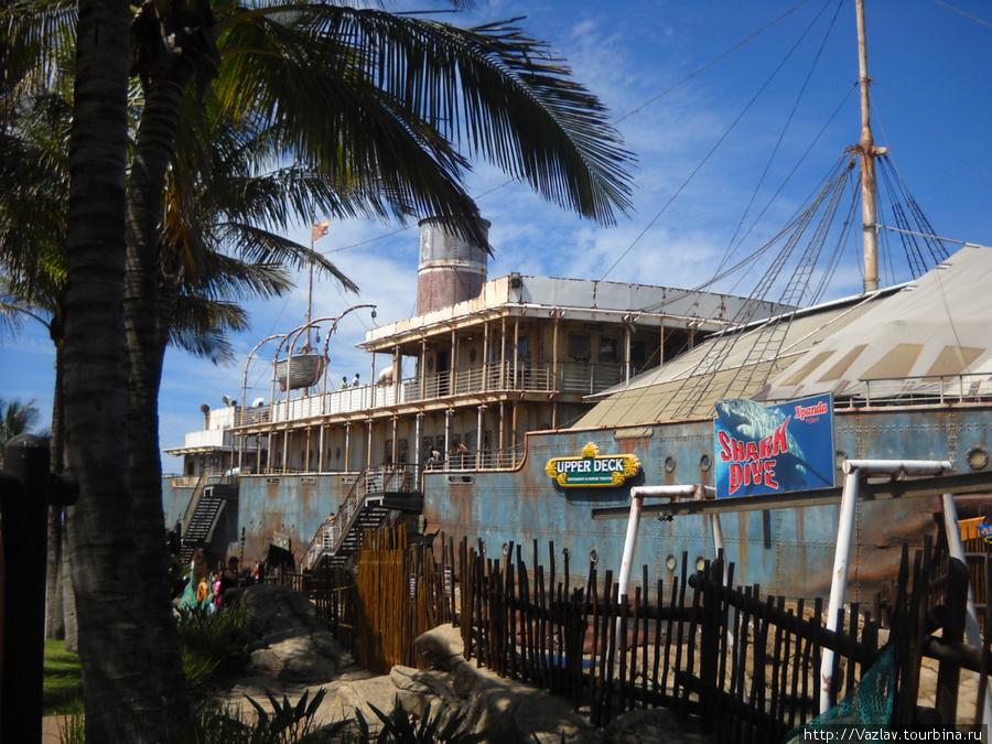 В недрах корабля скрываются аквариумы