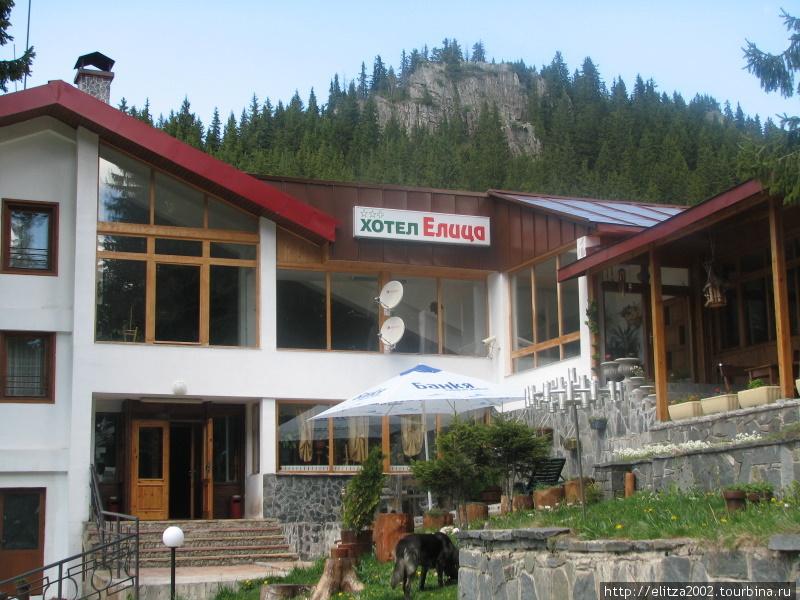 Отель Елица-Пампорово