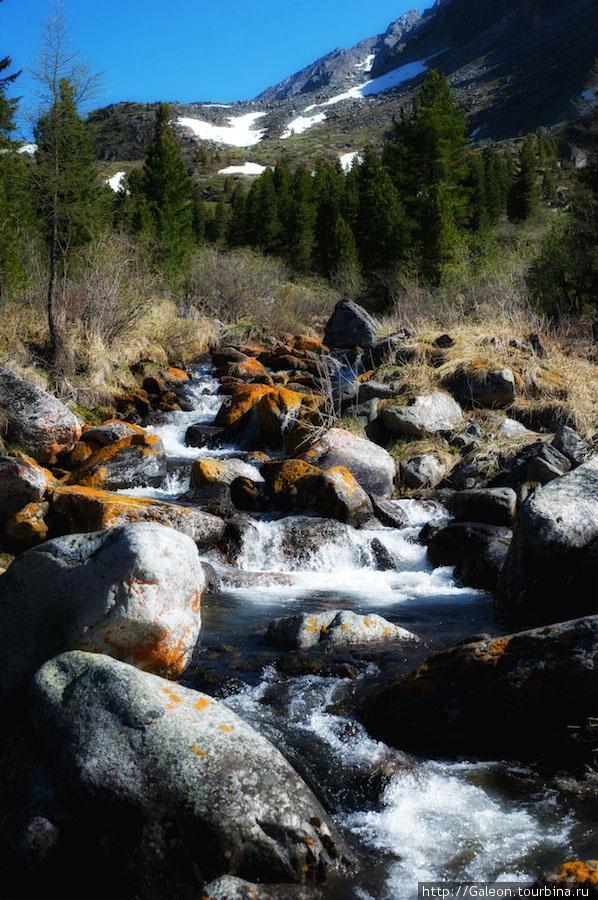 Бурные реки завораживали.