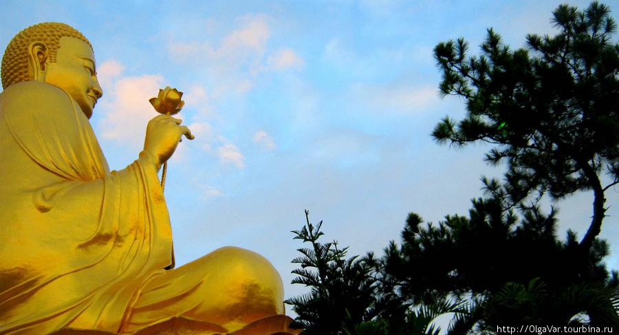 Огромный золотой Будда с цветком лотоса в руке блестел в лучах заходящего солнца