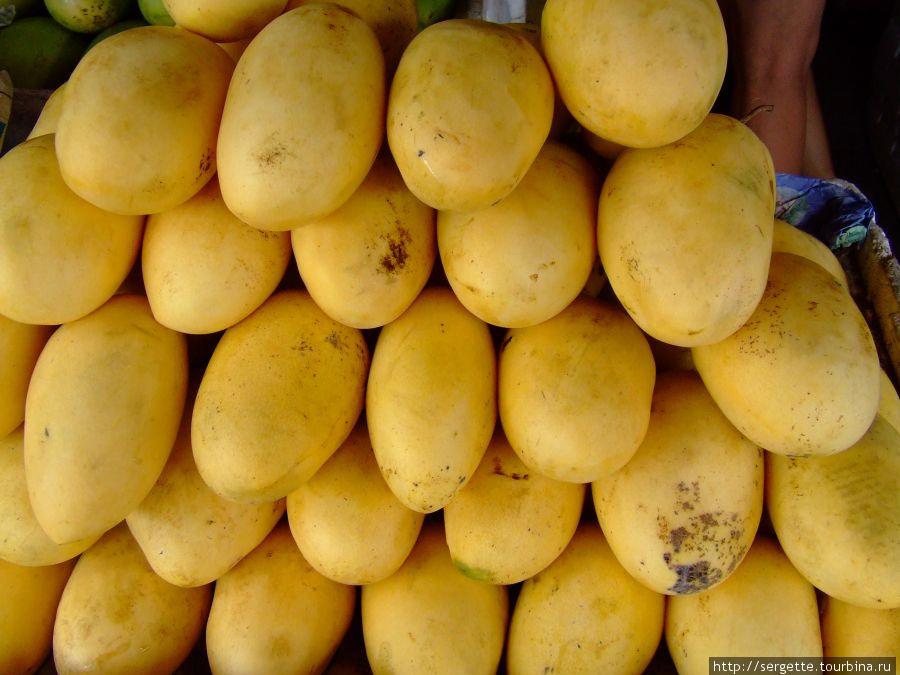 Первое место  отдаю манго. Обалденный фрукт, только косточка  внутри дурацкая.