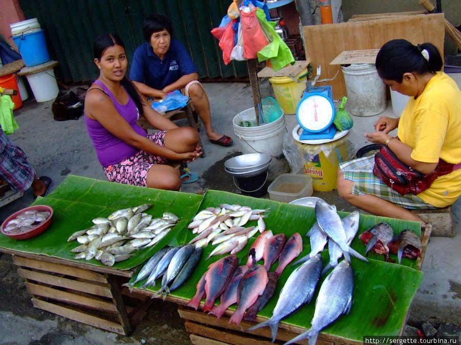Всевозможная рыба на рынке