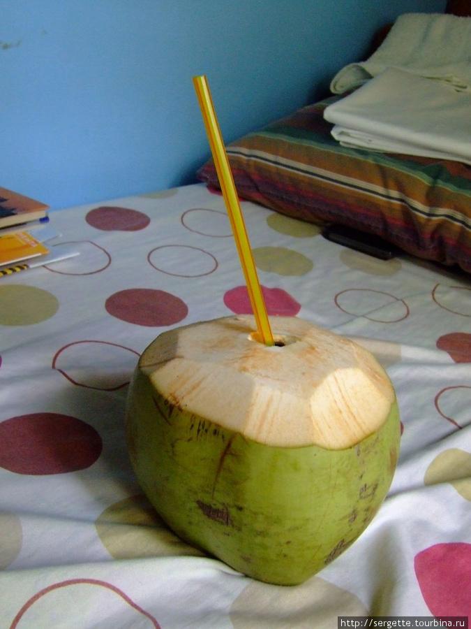 4. Кокос. Здесь я научился его кушать. Теперь знаю что пьют и что в нем едят. У молодого кокоса один вкус а у старого, зрелого другой