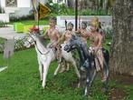 история Индонезии в микро-скульптурах!