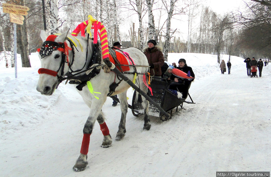 Лошади бежали неспешным ш