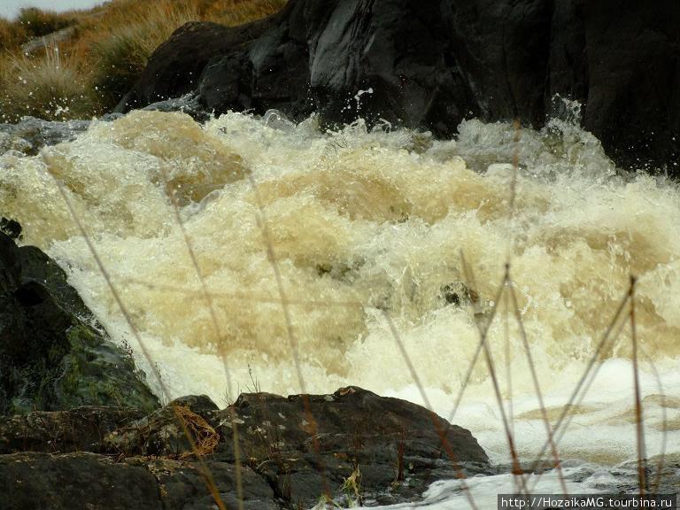 Водно-торфяные потоки