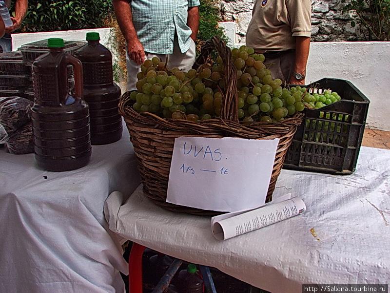 Виноград москатель в сент