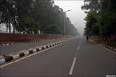 Где ещё есть такое в Индии? Говорят, что Чандигарх — город для машин в стране, где не у всех есть велосипеды.