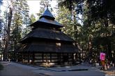 В сосновом лесу в Манали есть вот такой храм.
