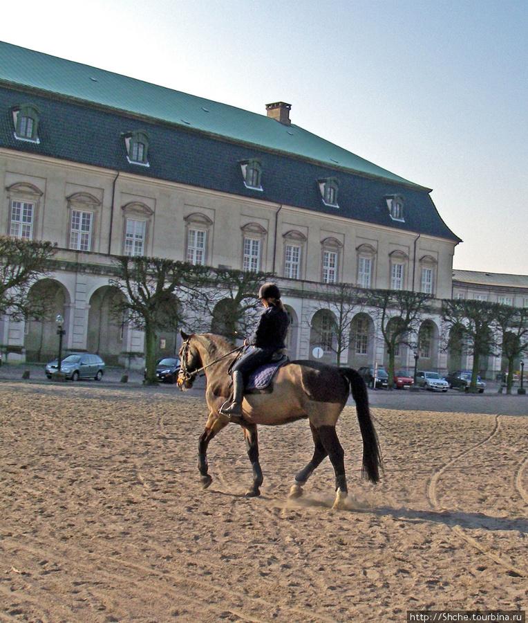 Во дворе дома правительства (Christiansborg Palace) есть площадка для тренинга лошадей, используемых для королевского выезда. Здесь многолюдно, ездят авто и выгуливают собак. Лошадей специально объезжают в таких условиях, чтоб они не пугались толпы, машин или собак, когда будут везти королеву.