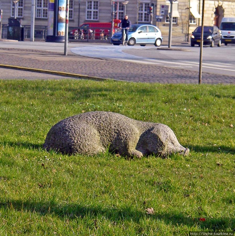Эта очаровашка отдыхает перед домом правительства (Christiansborg Palace).