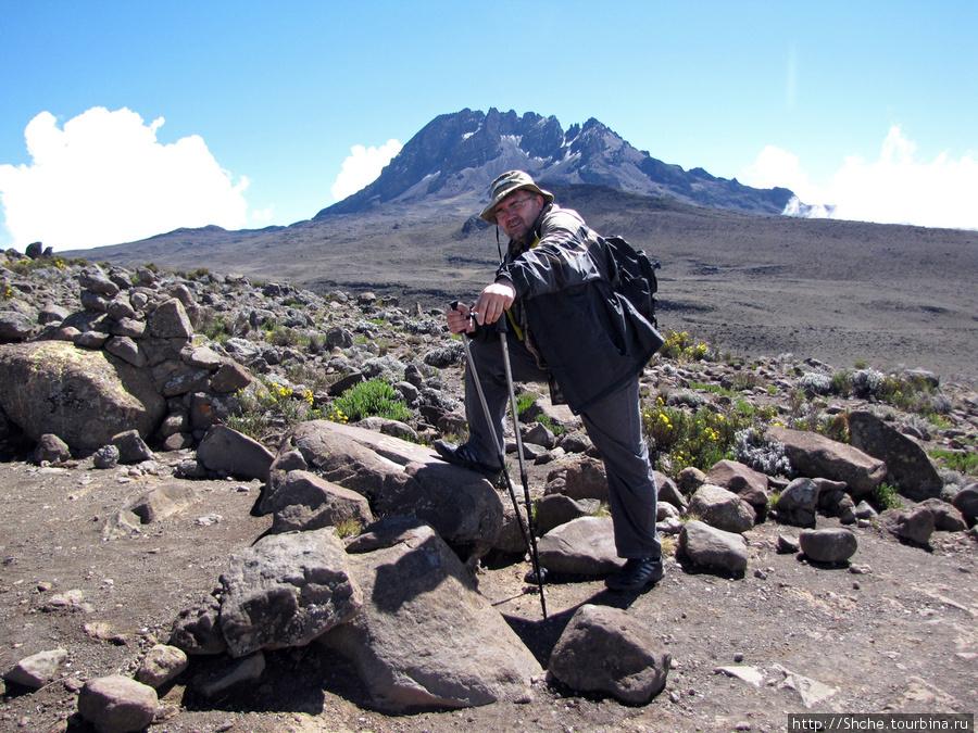 Я на фоне второй вершины Килиманджаро — Мавензи. Она ниже Ухуру, да подъем на нее невозможен. Порода