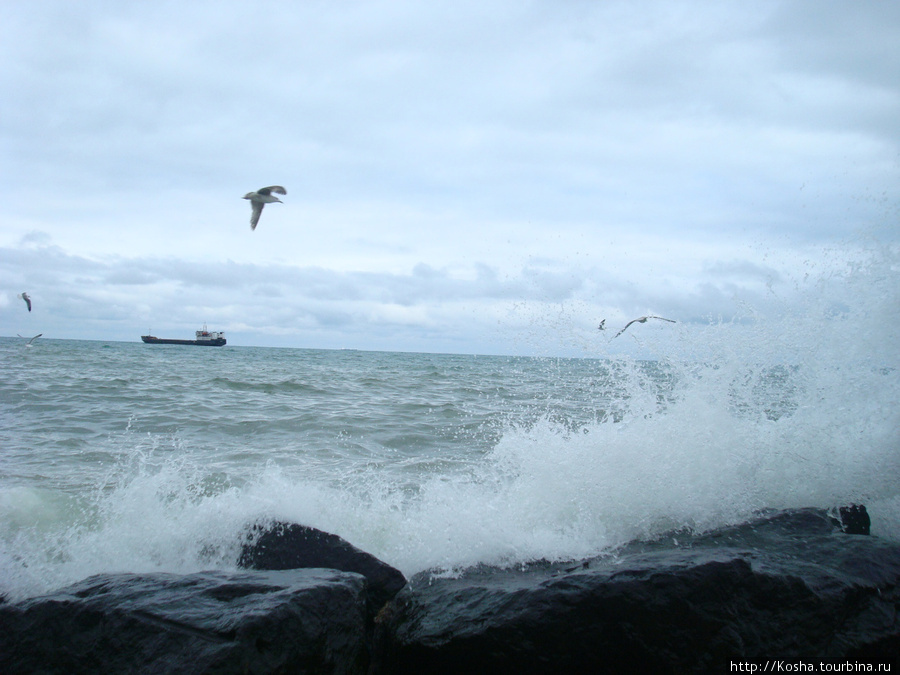турки считают Чёрное море в Трабзоне слишком холодным, поэтому не купаются в нем, даже нет пляжей.