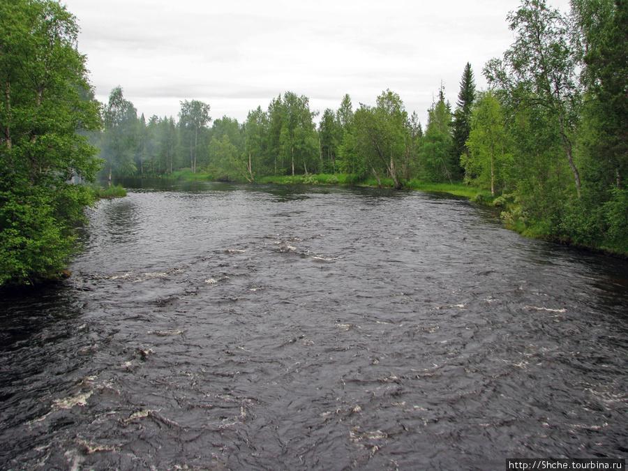 Первые виды реки, хочется снимать каждую минуту.
