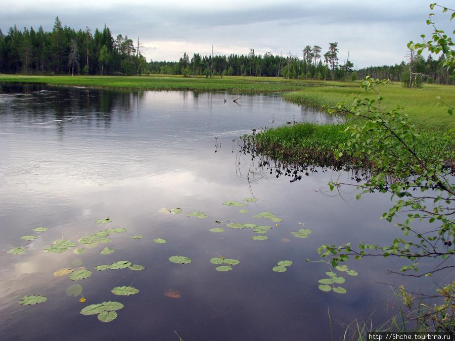 Стремнины переходят в озера или тихие заводи.