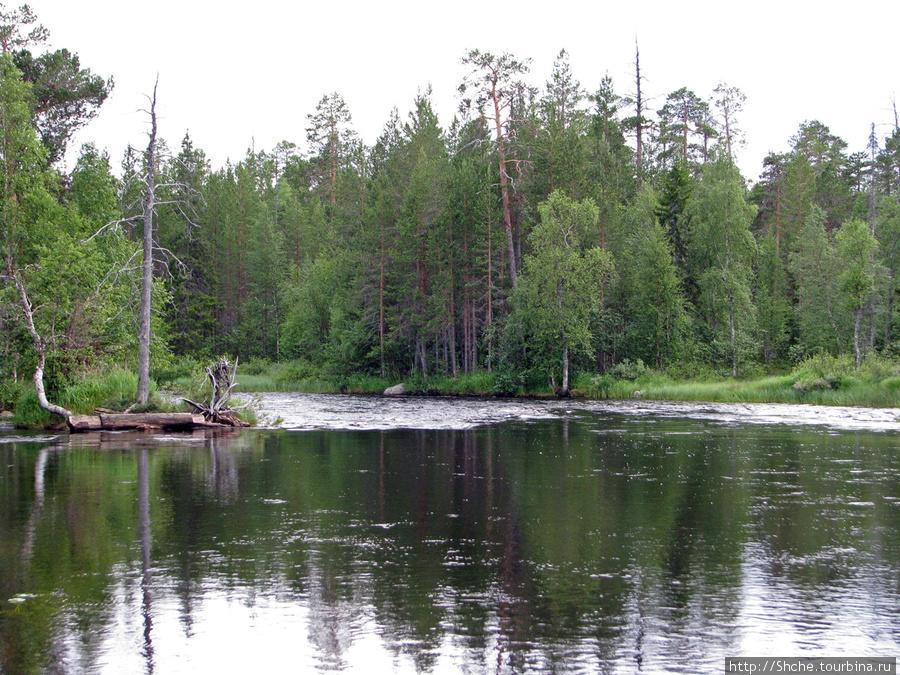 Иногда из озер есть несколько выходов, причем не всегда очевидно, какой из них продолжение нашей реки.