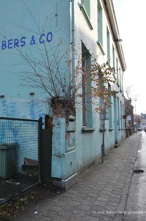 г. Тюрнхаут, Бельгия. Жилые дома в старом квартале Begijnhof