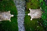 Милые механически-водные миниатюры