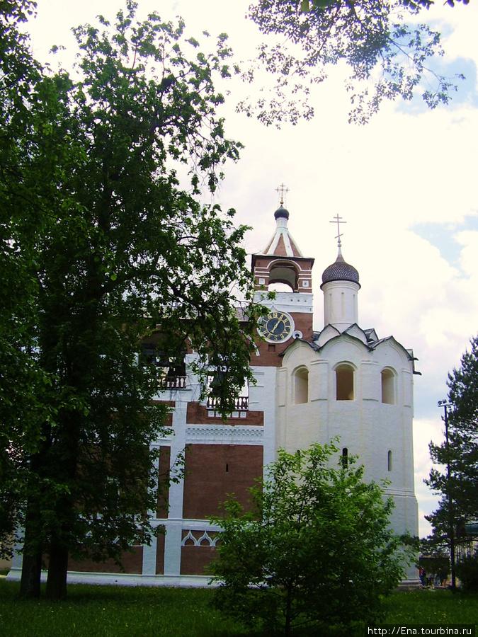 22.05.2010. Суздаль.  Спасо-Евфимиев монастырь. Звонница