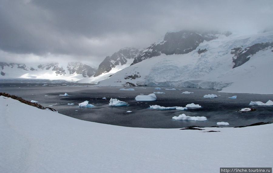 Черные воды Антарктики