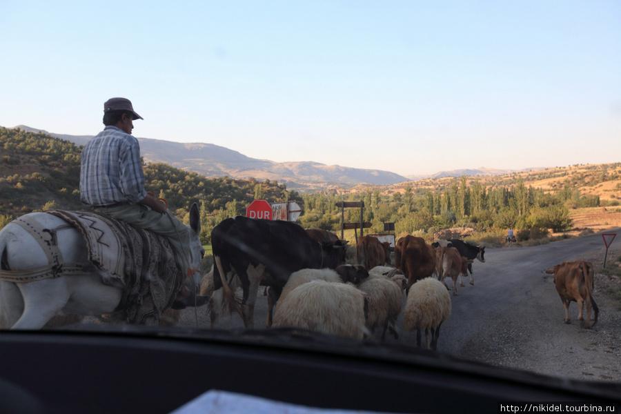 по сельским дорогам Турции