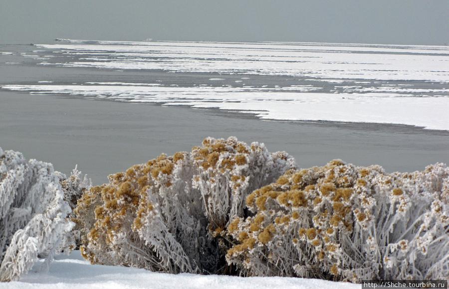 не все побережье было покрыто льдом