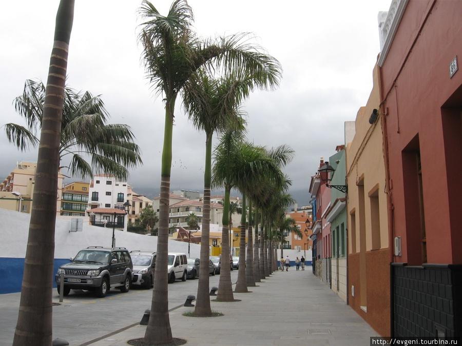 красивая улочка Calle de Mequines —  — идёт от Playa Jardin, к пл. Charca
