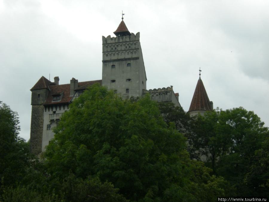 замок Бран, замок