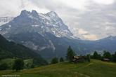Дорога привела нас на роскошный цветущий альпийский луг.