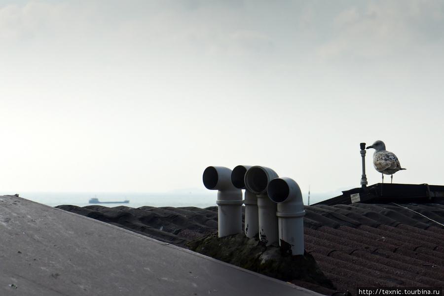 Фото Саши toinvent — вид в сторону Босфора