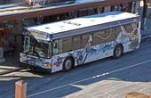 Вспомним фильм  Скорость — американцы наносят номер автобуса и на крышу.