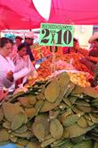 Два кило кактусов за десятку