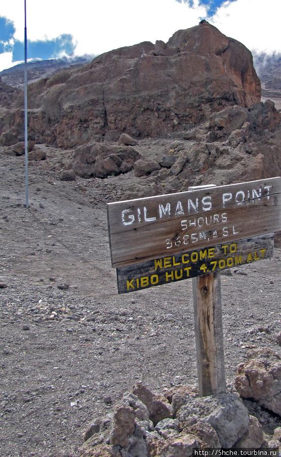 Веселый случай с этой табличкой рассказал Сафи. Как-то несколько японцев дошли до лагеря, закрыли нижнюю часть таблички, пофотографировались и говорят, типа пошли вниз, мы расскажем, что поднялись на Gilmans Point. Кстати, Gilmans Point — это одна из точек Кили, где считается, что гора покорена.